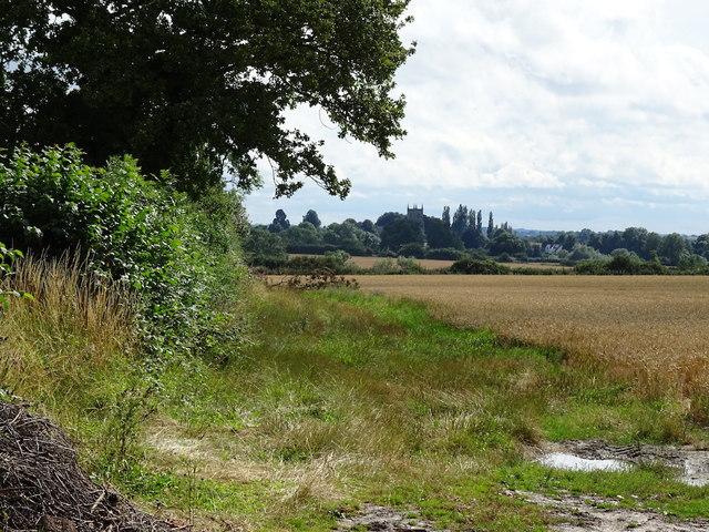 Bridleway towards Swepstone