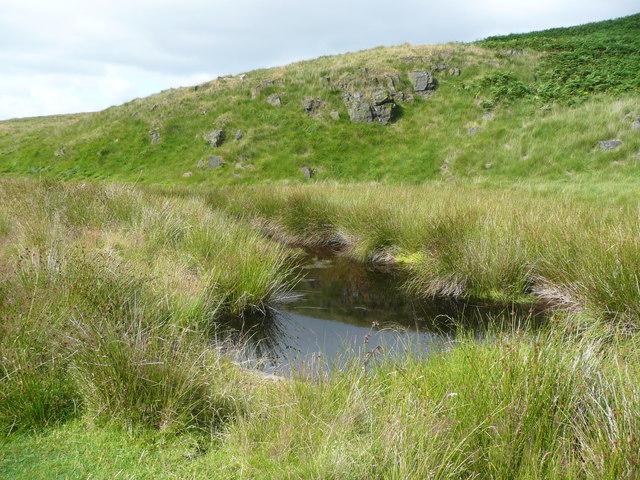 Pond on Solomon Cutting, Chelburn Moor