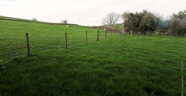 Fields at North Poorton