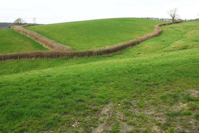 Fields east of North Poorton