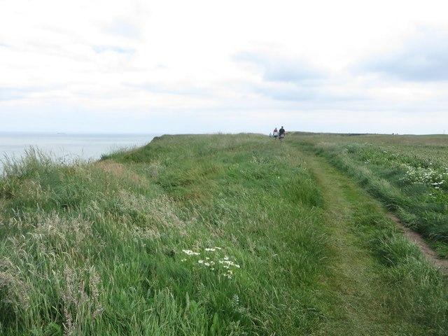 The Headland Way at Breil Head