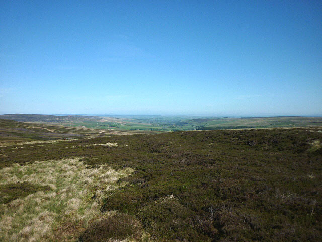 Moorland above Allen Cleugh