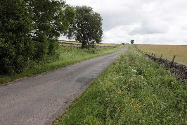 Horse Lane
