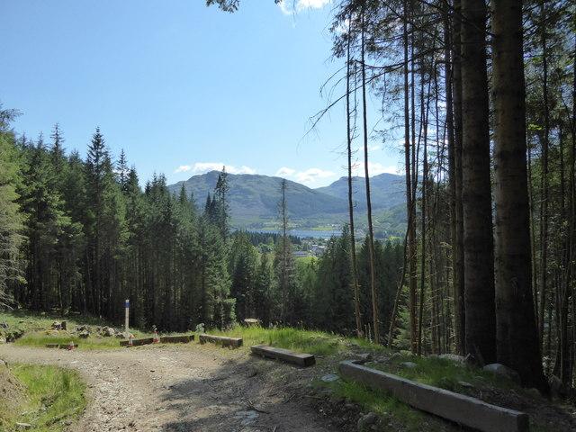 Forest path, Inveronich