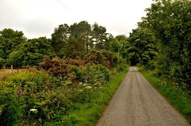 Ardshave Road, Sutherland