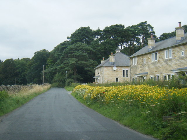 Dunsop Bridge, recent housing on edge of village