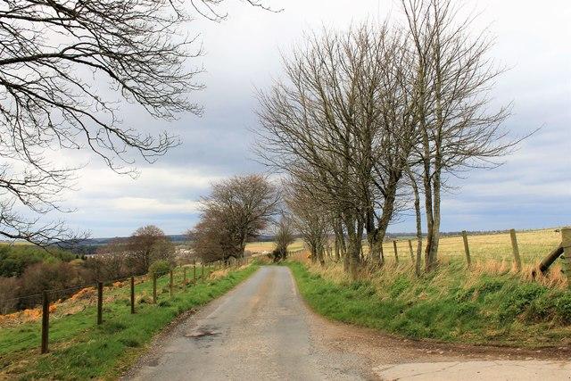 North from Bogdavie