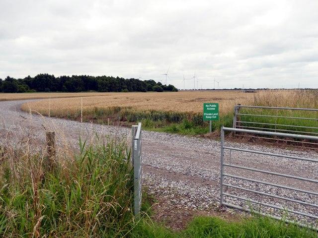 Road to Tween Bridge Windfarm
