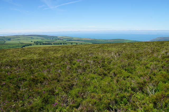 Moorland near Dunkery Beacon