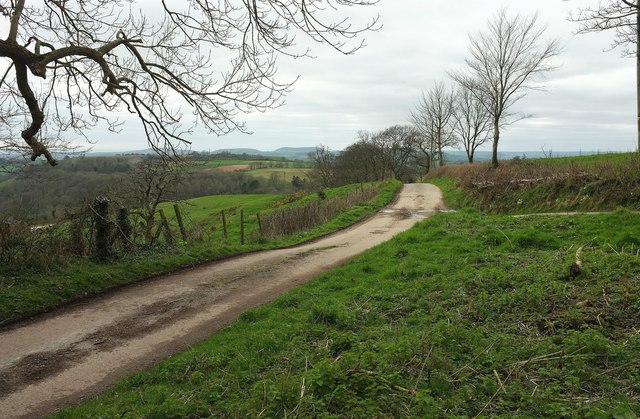 Public access route, Coltleigh Hill