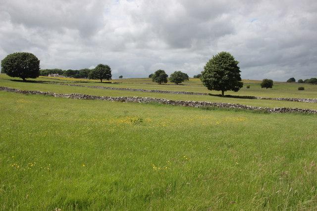 Fields near Sheldon