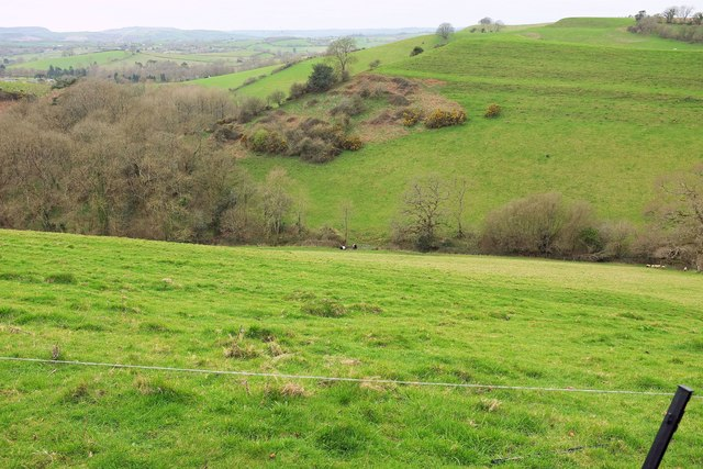 Valley and strip lynchets, Mapperton