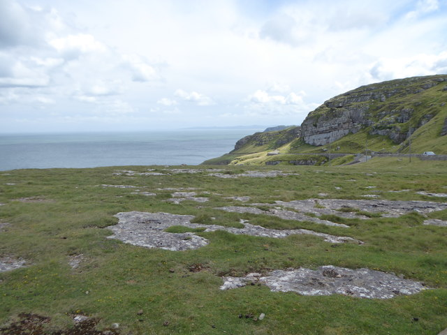 Small area of limestone pavement on the northern tip of Great Orme's Head