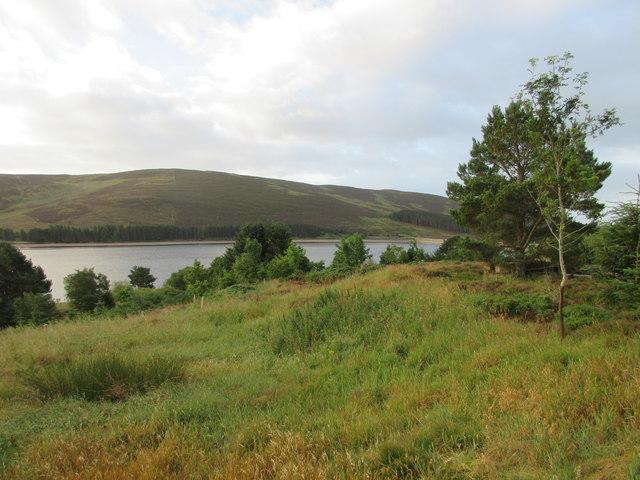 Hillside above the reservoir
