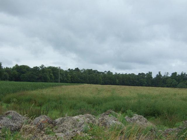 Crop fields, Fordel Dean