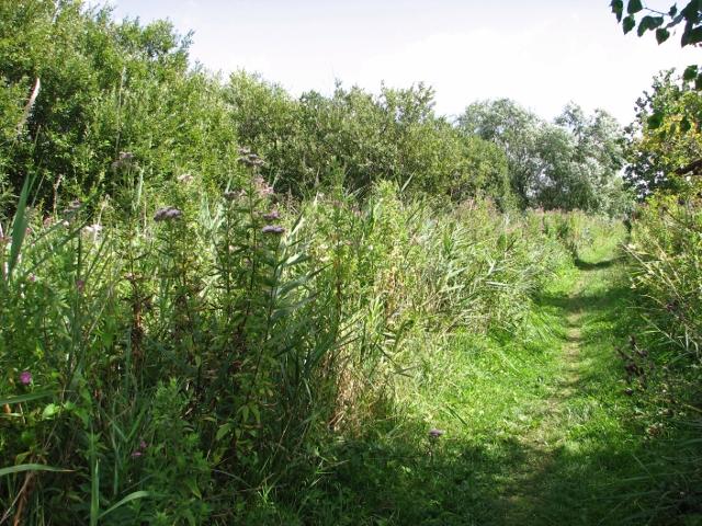 View along Beerlick's Loke