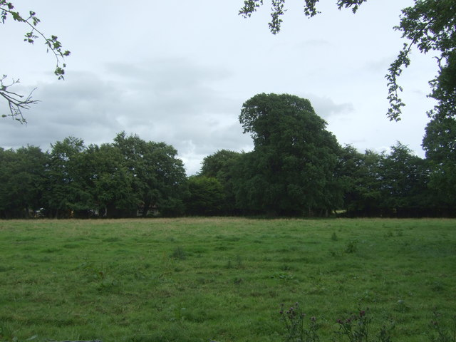 Grazing, Ormiston Hall
