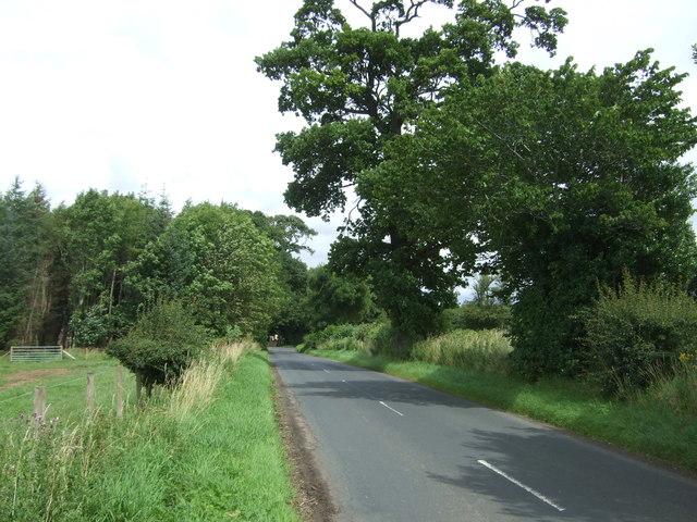 Minor road near South Lodge