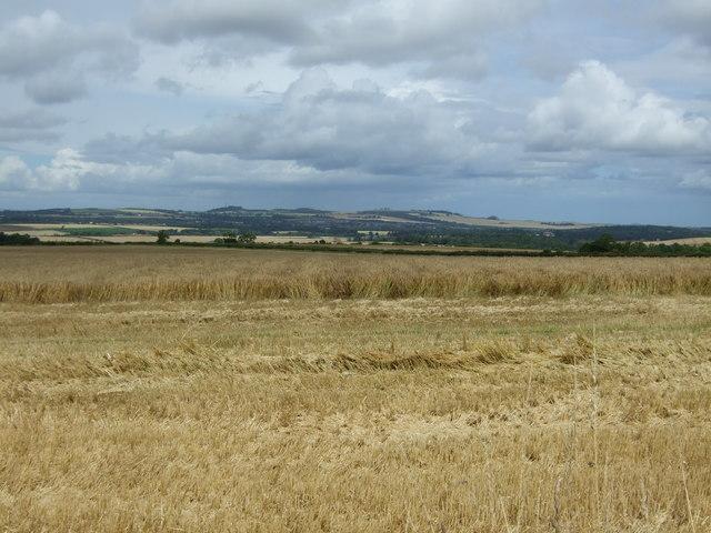 Crop harvest in progress near Blance