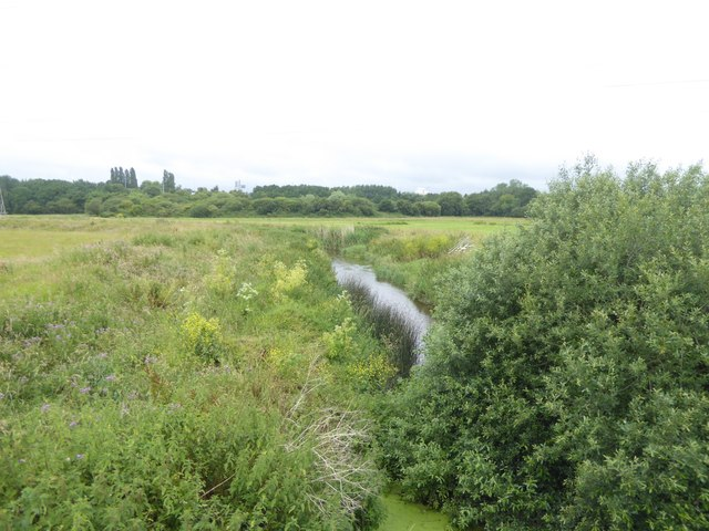 River Clyst between Sowton and Clyst St Mary