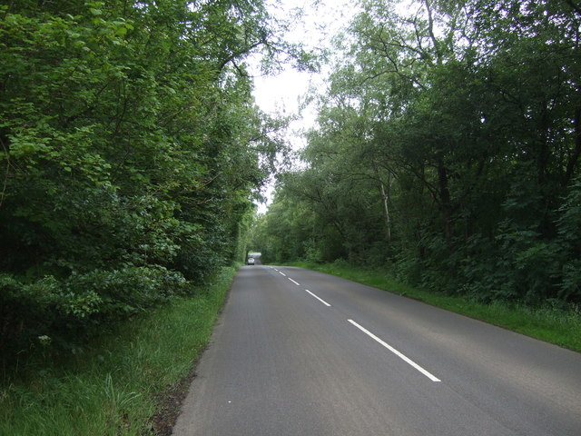 B6355 through Bolton Muir Wood