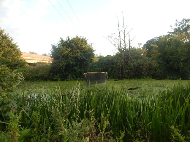 Trampoline in the Gipping