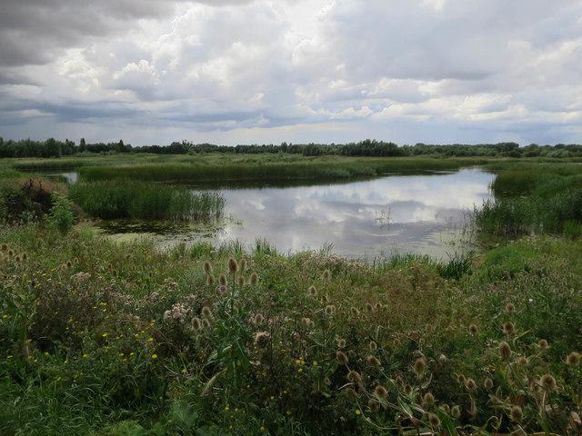 Elney Lake