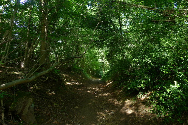 Steep path at the bottom of Claypit Wood