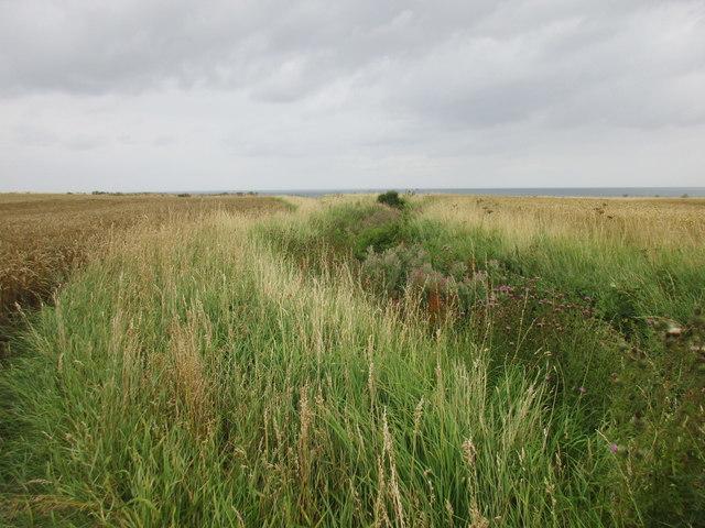 Soldiers' Dike at Garton Gap