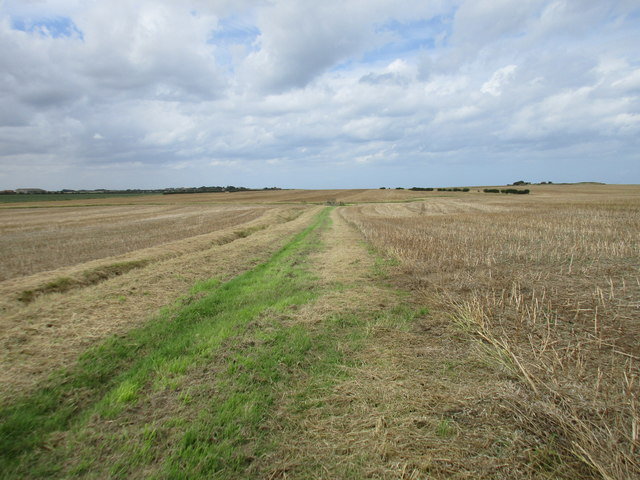Diverted bridleway to East Newton
