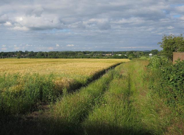 Field by Duxford Road