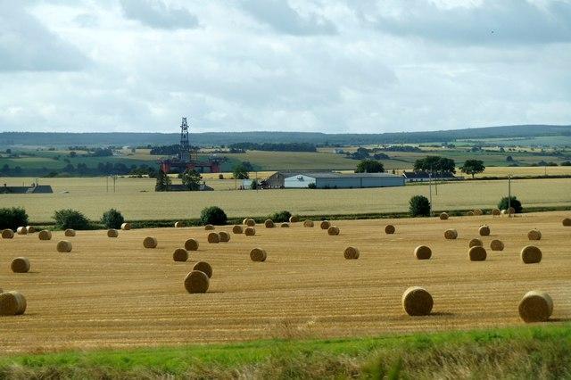Fields west of Invergordon