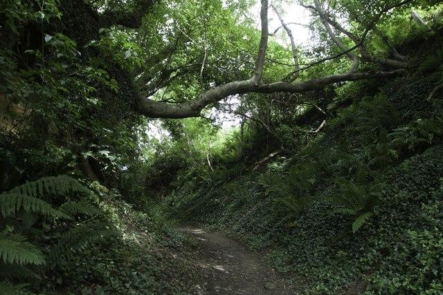 Holloway: Quarr Lane