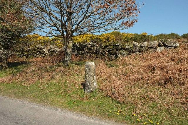 Standing stone, Rushlade Common