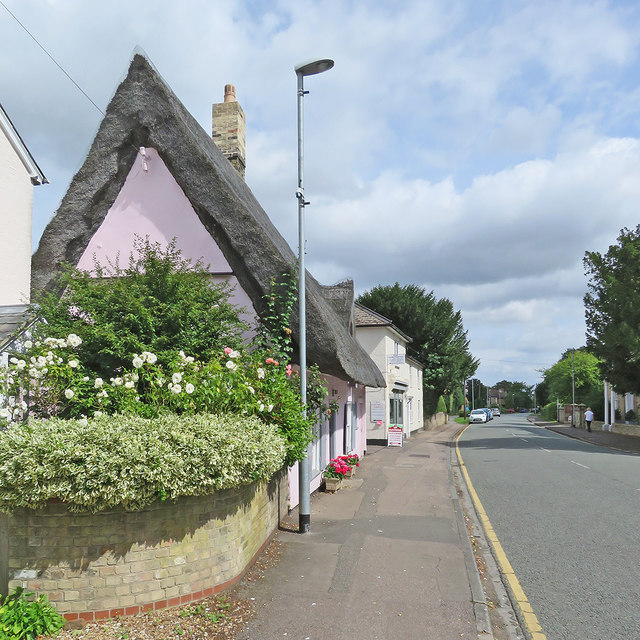 Great Shelford: summer blooms in the High Street