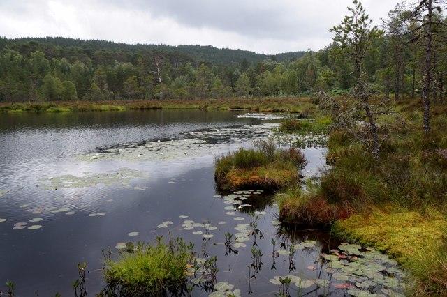 Coire Loch, Glen Affric
