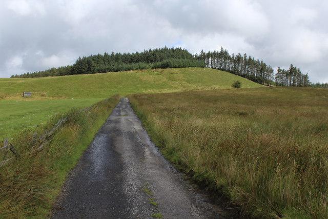 Access Lane to Whitemore (2)