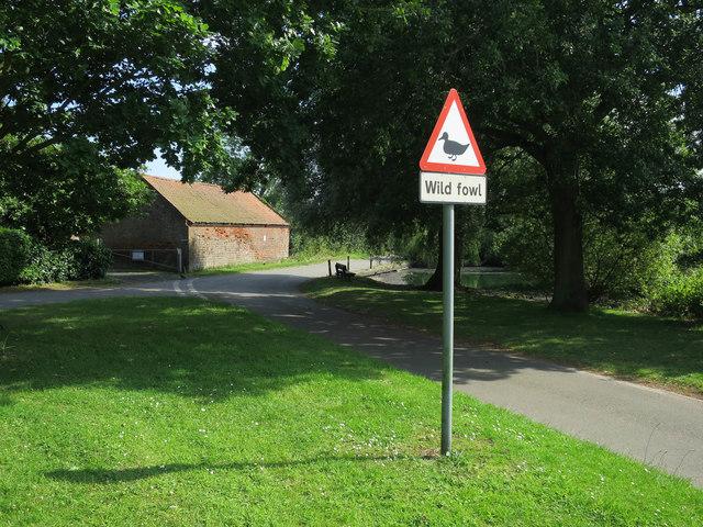 Warning sign, Shrublands Pond