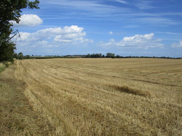 Harvested field near Humbleton Grange