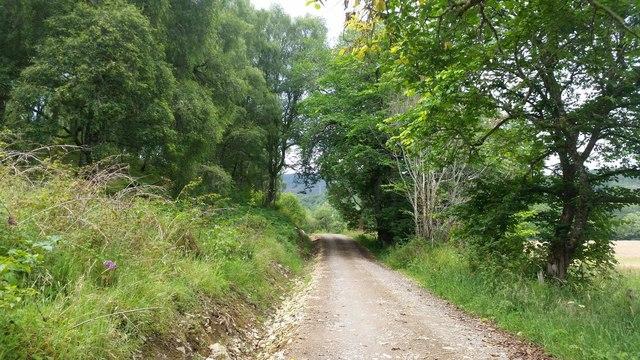 Track near Struy
