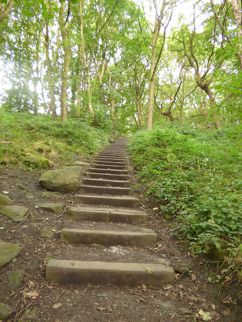 Steps up from Forge Locks into Bramley Fall