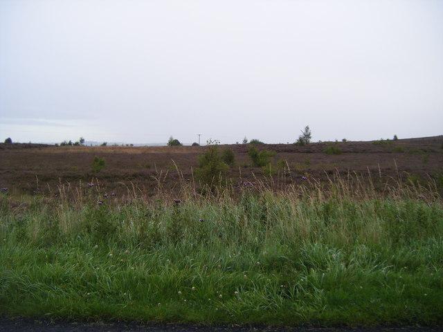 Knitsley Fell