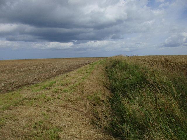 Field boundary between Garton and Ringborough