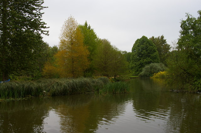 Pond in the north-east corner of the University Parks, Oxford