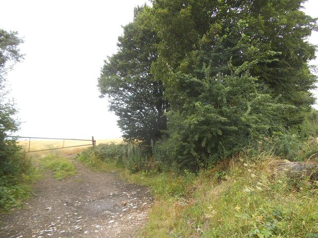 Field entrance on Pepsal End Lane