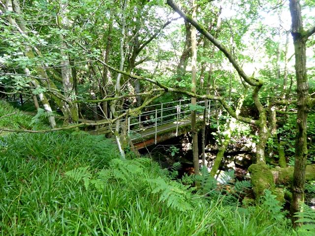 Footbridge at Redlead Mill