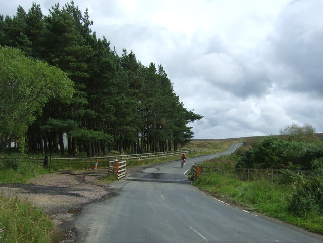 Cattle grid on the B6355 near Darent House