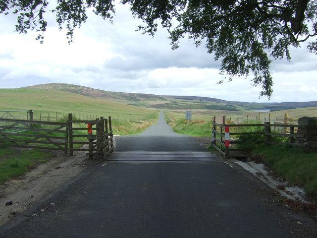 Cattle grid on the B6355 near Mayshiel