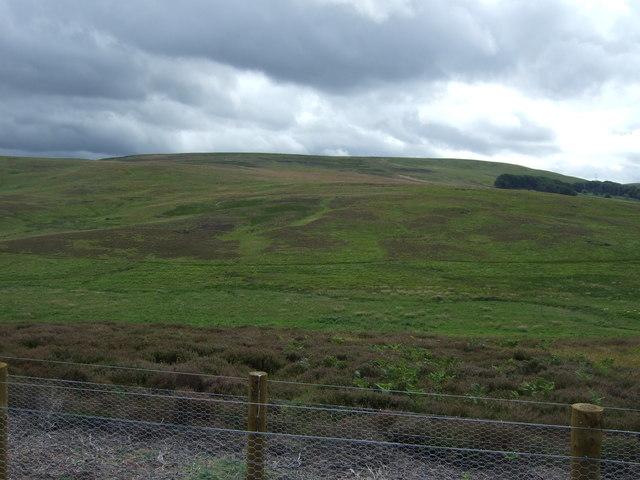 Moorland and grazing near the Kell Burn