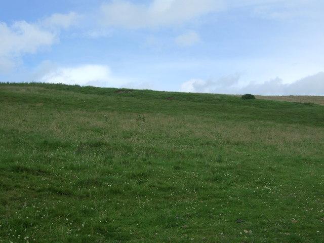 Hillside grazing, Millknowe